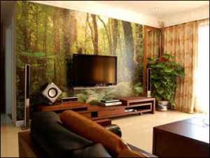 實用面積27個平方能裝一室一廳裝修效果圖公寓